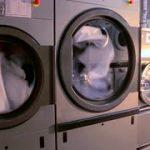 Industrial washing machine repairs